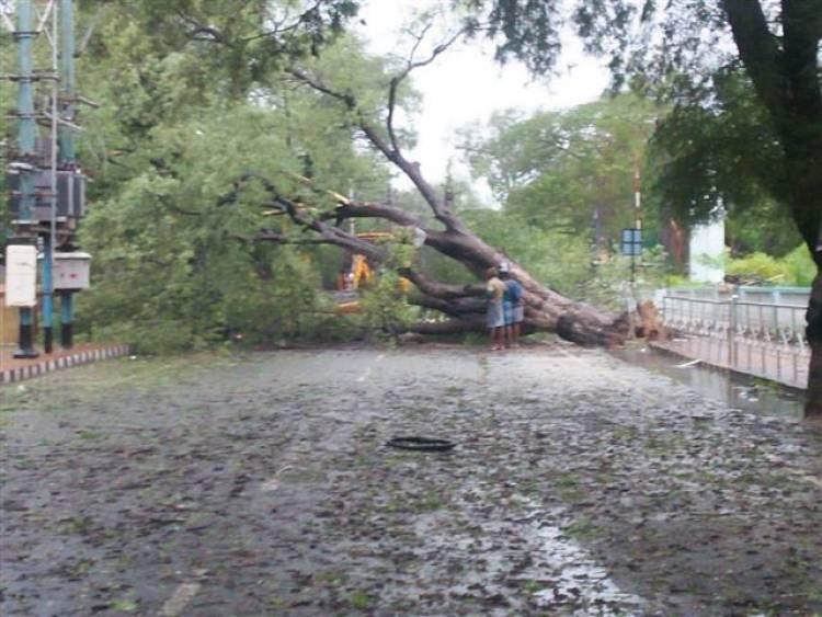 Cyclone GAJA Lashes Tamil Nadu (STILLS)