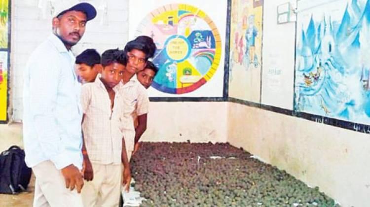 வலங்கைமான் ஒன்றியம் நார்த்தாங்குடி அரசுப் பள்ளியில் 10 ஆயிரம் விதைப் பந்துகளை தயாரித்த மாணவர்கள்