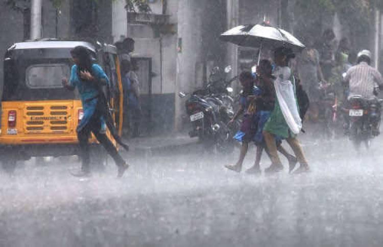 சென்னையில் பெய்து வரும் கனமழை- பள்ளிகள் வழக்கம்போல் இயங்குகின்றன