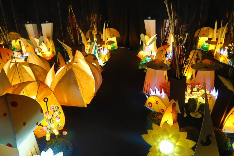 How will a grand festival of light like emrg bring a revolution in the New Media industry